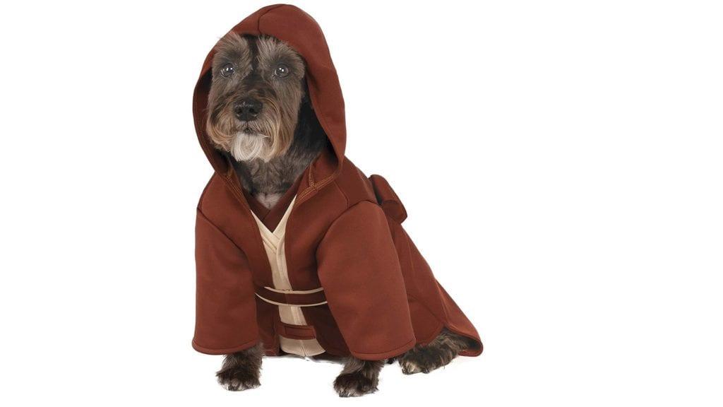 dog-wearing-jedi-costume